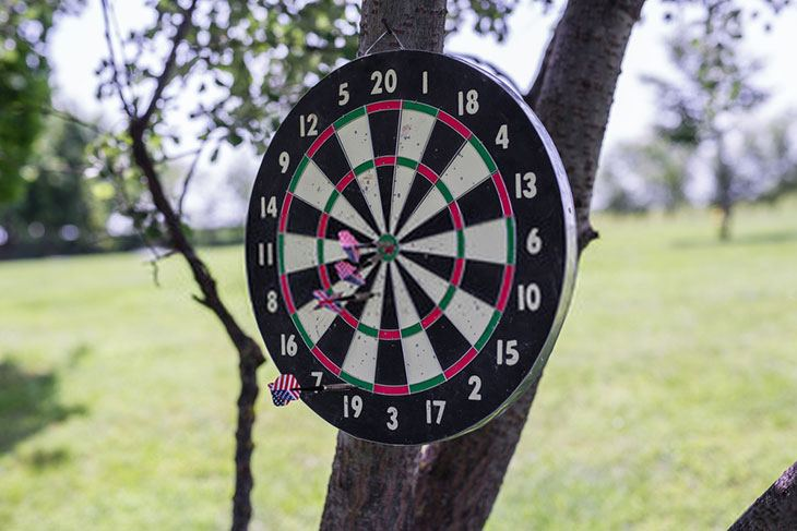 outdoor dartboard cover