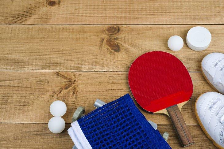 best table tennis defensive blade